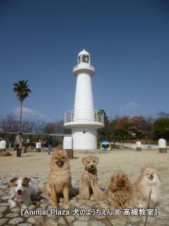 青空に白い灯台の美しい風景♪