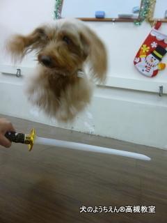 刀を飛んで軽やかにかわすプクちゃん♪